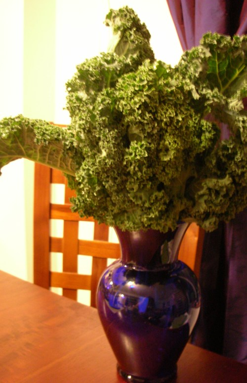 looked like a bouquet, so I put the kale in a vase