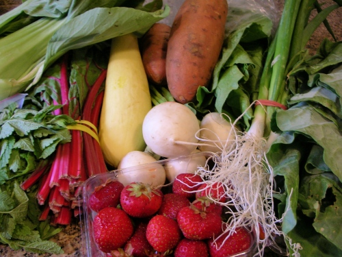 Heaven's Harvest CSA share