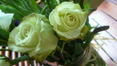 green roses for shavout