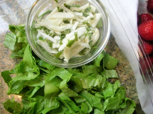 marinated white Hakurei turnips with lemon balm, romaine lettuce