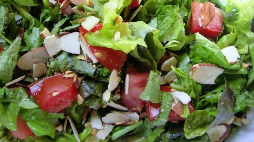 kibbutz herb salad close-up