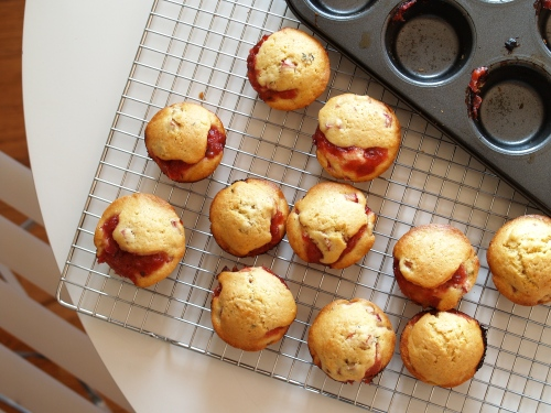 rhubarb thyme muffins
